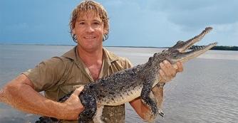 Steve Irwin NAP - november 15.